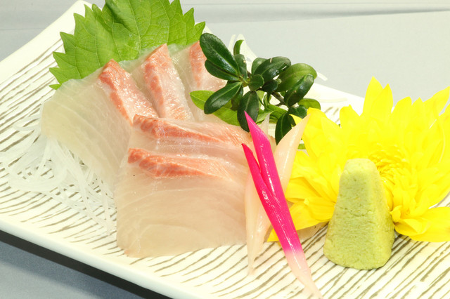 豊海- カンパチ刺身