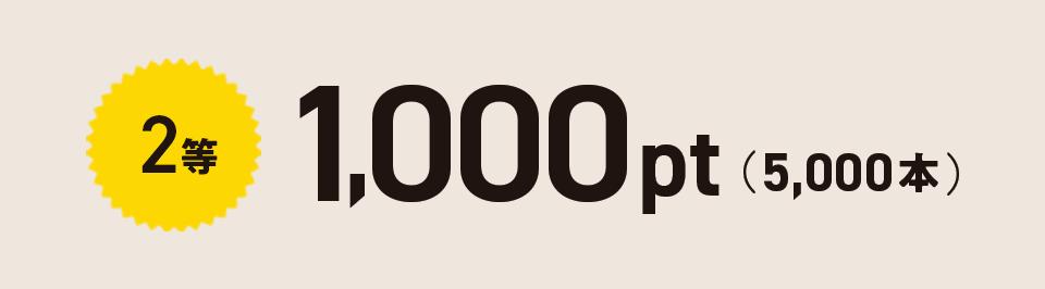 2等 1,000pt(5,000本)