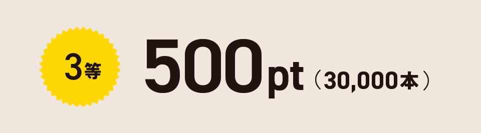 3等 500pt(30,000本)