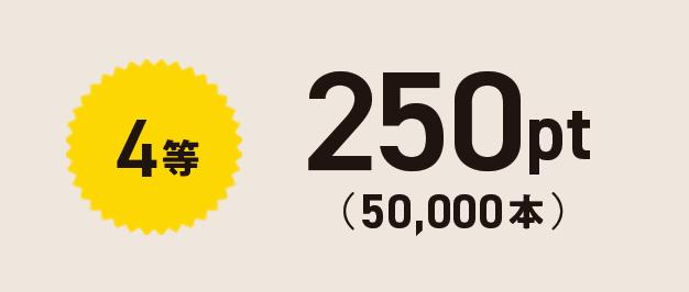 4等 250pt(50,000本)