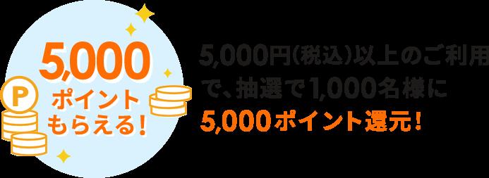 5,000ポイント還元!