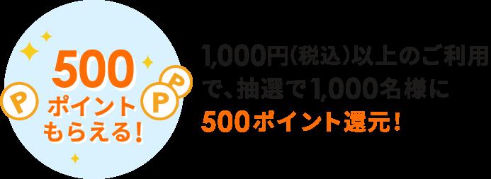 500ポイント還元!