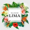 Bali resort LIMA - メイン写真: