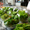 モンテ アスル - メイン写真:ガーデンサラダブッフェ