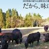 居酒屋 たなか畜産 - メイン写真: