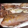 須崎魚河岸 魚貴 - メイン写真: