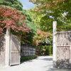 京都 吉兆 - メイン写真: