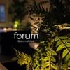 forum - メイン写真: