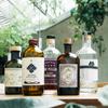Sta. - ドリンク写真:Craft gin