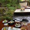 貴船 仲よし - 料理写真:料理と川床