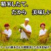 天ぷらめし 天之助 - メイン写真:
