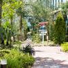家カフェ+Garden - メイン写真:
