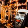 フランス酒場 ル・プー - ドリンク写真:ビールサーバー