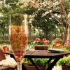 Cafe Restaurant AUREOLE - メイン写真: