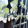 焼肉 徳川苑 - メイン写真: