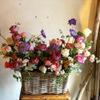 Flowers&Spanish Sonrisa - メイン写真: