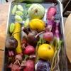 ピッツェリア ピッキ - 内観写真:テラス席では農家さんから届いたお野菜がお水につかりリフレッシュしてます(笑)