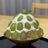 茶の木村園 - メイン写真: