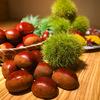 和の焼肉処 肉匠MIEDA - メイン写真: