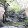 萩の茶屋 - 内観写真:木の温もりが落ち着くエントランス、お席から眺める日本庭園