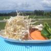 ひつじの丘 - 料理写真:【焼き野菜セット】季節によって、アスパラ、じゃがいも、カボチャ、マイタケ、ニンニク芽など。農家さんから直接仕入れの野菜もございますので、存分に富良野を味わえます。