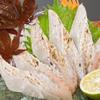 四国三郎 よしの川 - 料理写真:太刀魚の炙り刺身