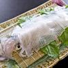 割烹よし田 - 料理写真:よし田と言えば、ぷりっぷりの呼子の活イカ。