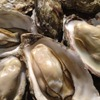 かき殻荘 - 料理写真:かき殻荘 看板メニュー 「蒸しかき」絶対食べて下さい!