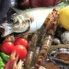 居酒屋 海山 - 料理写真:こだわりの地魚と野菜