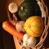 夕凪 - その他写真:おばんざい(一品料理)に使うお野菜♪