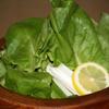 葡萄屋 - 料理写真:さらだ菜のサラダ ¥2,100 さらだ菜、きゅうりをゴマ油で和えたものに白髪ねぎを添え、レモンを絞っていただきます。(ハーフサイズ/1,575円)