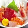 鶏のんちゃん - 料理写真:新鮮な海の幸が盛りだくさん!おまかせ盛り合わせ