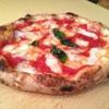 ソロピッツァ ナポレターナ - 料理写真:世界一のマルゲリータ