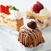 TOYO - 料理写真:当店専属のパティシエが作る自家製ケーキも多数ご用意しております。