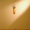 京懐石 吉泉 - 内観写真:店内:いちりんの花、一幅の掛軸、すみずみまでに気を配り、まごころの振舞いでお待ちしております。