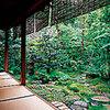 杉の井 - 内観写真:艶やかなみどりに囲まれてのお食事はいかがですか?