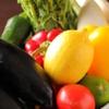 カンティーナ ピアノ ピアーノ ブリーゼブリーゼ - 料理写真:その時一番美味しい食材を使って…素材にこだわった料理をご提供致します。