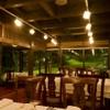フレンチレストラン 蔦の葉 - メイン写真: