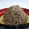 富蔵家 - 料理写真:田舎そば910円 「挽きぐるみ」と呼ばれるそばの実を殻まで挽いた粉で打つそばを「田舎そば」といいます。