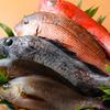 お菜家 - 料理写真: 食材は築地直送!旬の食材を こだわり新鮮な物を仕入れています