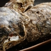 喜助 - 料理写真:天然 岩牡蠣