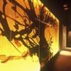青山 星のなる木 - メイン写真: