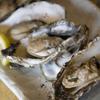 根室食堂 - 料理写真:今が旬!石野の殻付カキ