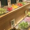京・錦 おばん菜ビュッフェ ひなたや - 料理写真:彩り野菜のサラダコーナー