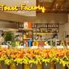 ザ・フレンチトースト ファクトリー - 内観写真:店内は広く、高い天井が解放感を演出しています。おしゃれでかわいいインテリア空間で世界一の幸福感を味わえるフレンチトーストを!