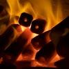 炭火焼肉ホルモン横丁 - メイン写真: