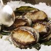 表参道うかい亭 - 料理写真:うかい亭のスペシャリテ 鮑の岩塩蒸し