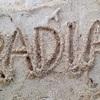 RADIA - メイン写真: