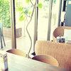 カフェ ルア ルア - 内観写真:外にはオープンテラスがあり目の前はドッグランになています