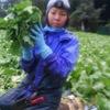 eat 産直野菜とブランド豚工房 - メイン写真: